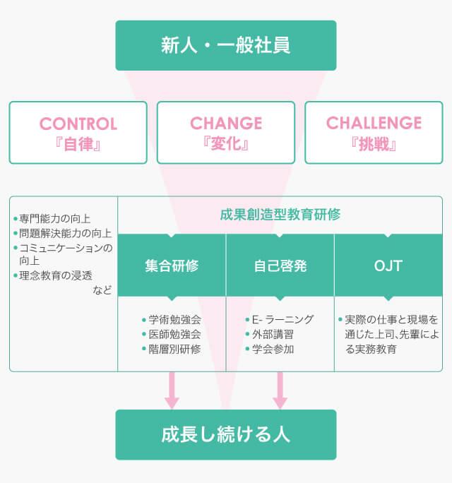 社員教育過程イメージ